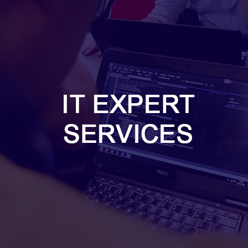 IT EXPERT SERVICES